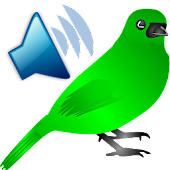 Birds Ruft Sounds