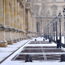 The Louvre *December by Andy Fucile - Buildings & Architecture Public & Historical