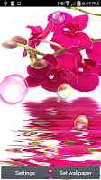 Screenshot of Orchid Bubbles