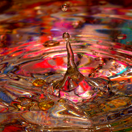 Pointed by Janet Lyle - Abstract Water Drops & Splashes ( water, splash, colors, droplets )