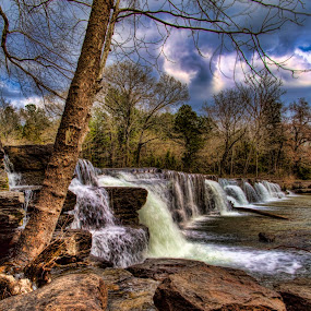 Natural Dam by Michael Buffington - Landscapes Forests ( stream, dam, waterfall, forest, rocks, arkansas,  )