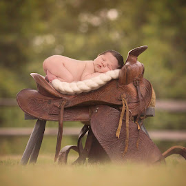 Saddle Baby by Emma Stasko - Babies & Children Babies ( saddle, western, newborn )