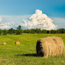 by Jerry Boyden - Landscapes Prairies, Meadows & Fields