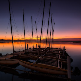 End of Day by Tony Irving - Landscapes Sunsets & Sunrises ( sailing, sunset, lake, catamaran )