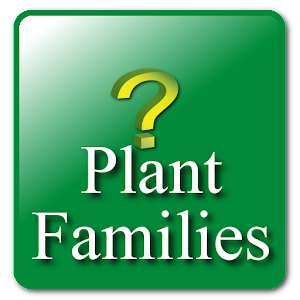 Key: Plant Families For PC