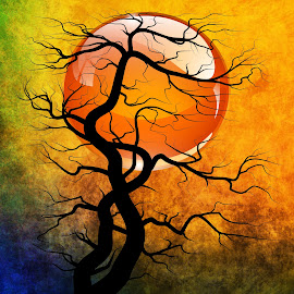 Sunset by Brian Lyne - Illustration Abstract & Patterns ( tree, abstract art, sunset, digital art, trees, gold, black, sun )