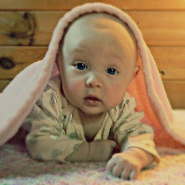 Baby in a Blanket by Becky Hardy Dixon - Babies & Children Babies ( babies, girl, pink blanket, adorable, baby )