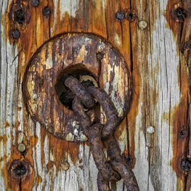Rusty Chain by Robert Willson - Artistic Objects Other Objects ( rusty chain, art, places, key west, usa, robert willson, willson, fl, chain, bob willson, documentary, artistic object, rust,  )