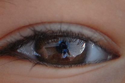 lala eye