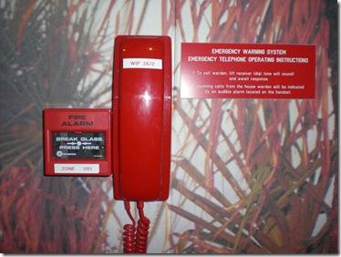 29 Fire phone