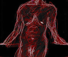 naked torso, drawing by S R Schwarz