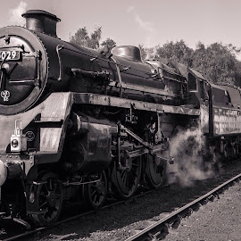 Grosmont  by Anthony Bowstead - Transportation Trains