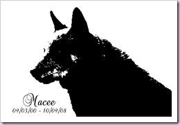 Macee100908