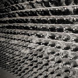 Mendoza Winery by Akar Necati - Food & Drink Alcohol & Drinks ( wine, cellar, mendoza, winery )
