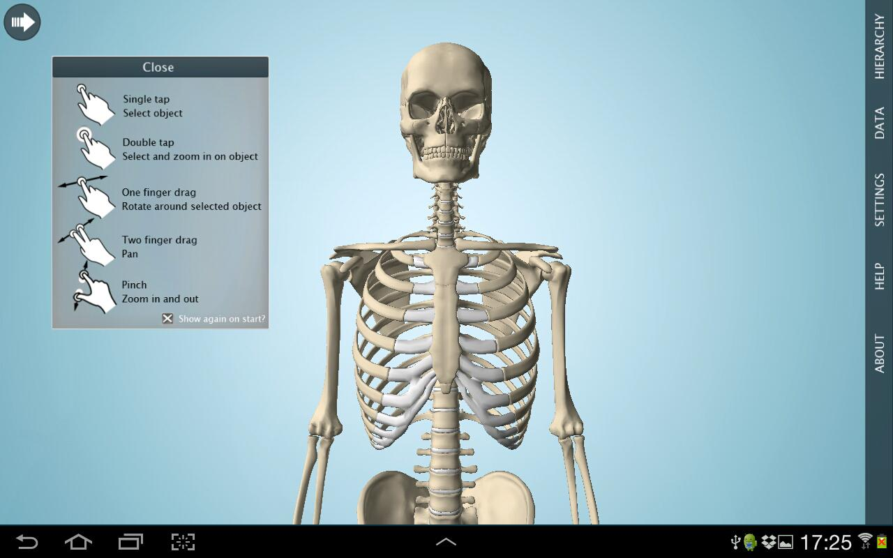 Anatomy 3D Pro - Anatronica Screenshot 0