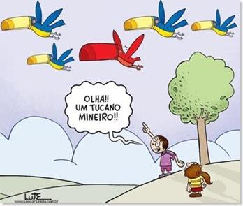 Tucano-Mineiro-Lute