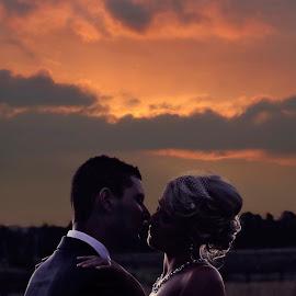 Sunset kisses by Alan Evans - Wedding Bride & Groom ( wedding photography, lovers, aj photography, marriage, wedding, wedding day, sunset, couple, bride and groom, hunter valley, bride, groom, hunter valley wedding photographer,  )