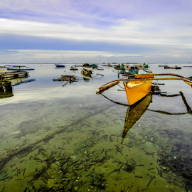 Cordova bay front by Dave Lerio - Transportation Boats