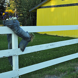 Twin Flower Pots. by Bob Grant Sr. - Artistic Objects Other Objects ( wood fence, fence, wood, levis, jeans, flower pots, rail fence, flowers, levi, flower,  )
