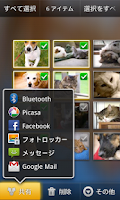 Screenshot of Photo Locker (Japanese)