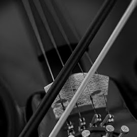 Strings by Allan Opguar - Abstract Fine Art ( string instrument, violin, allan opguar, allan, strings, philippines, viola, angeles city )