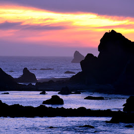 Oregon Coast Sunset by Brian Blood - Landscapes Beaches ( oregon, brookings or, sunset, ocean, beach,  )