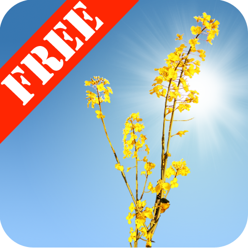 Yellow Field Free 個人化 App LOGO-硬是要APP