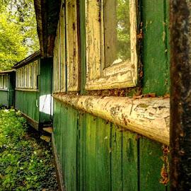 Litlle old train.. by Željko Salai - Transportation Trains