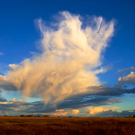 Stay Puff Cloud by Vern Tunnell - Landscapes Cloud Formations