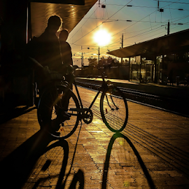Waiting for the Sun! by Jesus Giraldo - Transportation Bicycles ( contrast, bycicle, sunset, dark, shadows, sun )