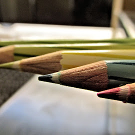 color pencil by Shamsad Mhd - Artistic Objects Education Objects ( color, india, steadtler, pencils,  )