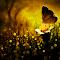 DSC_0261_ART2.jpg