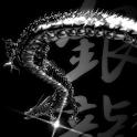 Silver Dragon Black