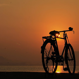 The two-wheeled wonder  by Parthasarathy S.K - Transportation Bicycles ( shore, cycle, bike, silhouette, india, sunrise, sun gleam, washerman, bicycle, Bicycle, Sport, Transportation, Cycle, Bike, ResourceMagazine, Outdoors, Exercise, Two Wheels )
