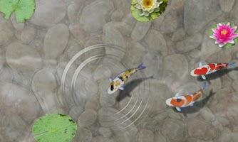 Screenshot of Feed My Fish