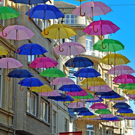 Umbrellas In The City 3 by Marco Bertamé - City,  Street & Park  Street Scenes (  )