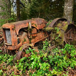01 overgrown tractor resize.png