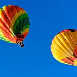 Soaring by Roy Walter - Transportation Other ( flying, hot air balloon, sky, floating, transportation, balloons )