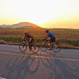 Early Morning Ride  by Kathy Suttles - Sports & Fitness Cycling