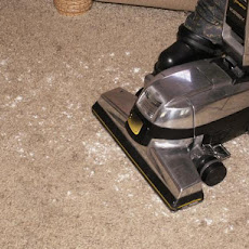 All-Natural Carpet Deodorizer