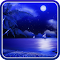 Night Beach Live Wallpaper 1.0.4 Apk