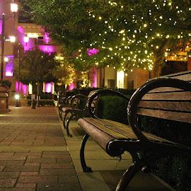 by Alvin Simpson - City,  Street & Park  City Parks