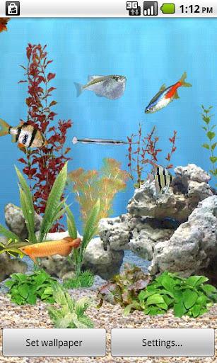 aniPet 민물고기 수족관 라이브 배경화면 무료