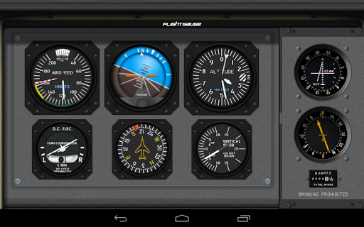 FlightGauge - screenshot