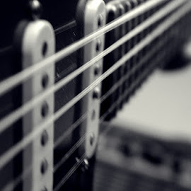 Squier by Luka Radulović - Artistic Objects Musical Instruments ( strat, guitar, squier, strings, closeup )