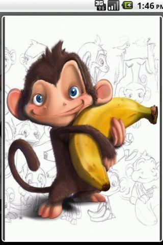 有趣的猴子