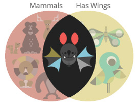 mammal-wings.jpg