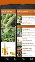 Screenshot of Exotic Fruits & Vegetables 2 L