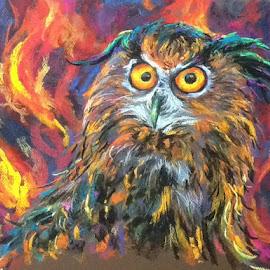Fiery owl by Sandy Scott - Painting All Painting ( pastel, eurasian eagle owl, art, owl, owl painting, bird art, painting )