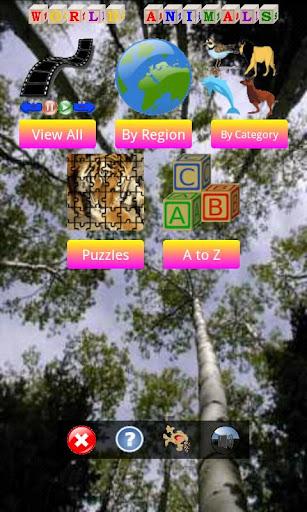 Animal World Pics and Games